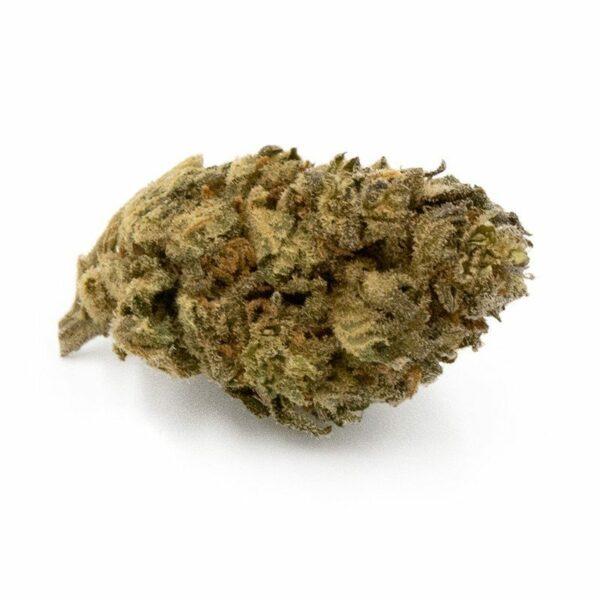 Orange Bud cbd pas cher