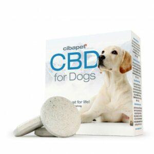 Pastille au CBD pour chiens de Cibapet Cibdol pas cher